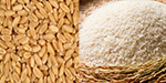 Does too much protein in wheat ariciyaivita?