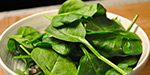 Spinach provides cooling for the body