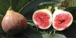 FIG Wow ...!