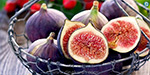 Figs that are typhoid fever