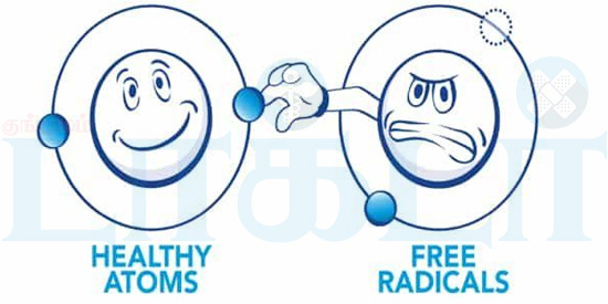 Free radicals that cause diseases