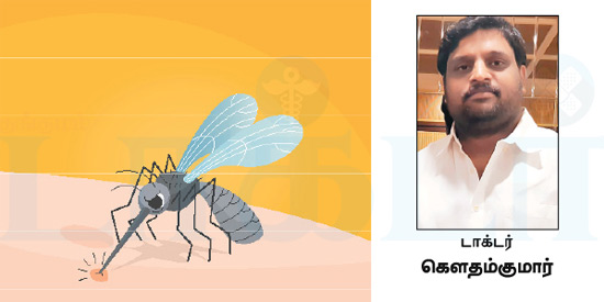 What to do immediately if the dengue comes ...