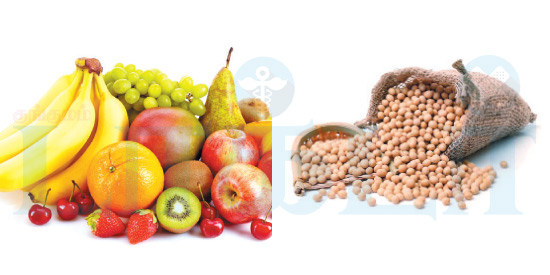 The glories and fruits of the fruit