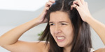Ways to solve the problem of lice and dandruff