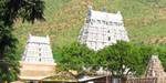 Full moon in the month of December is the time to come to Tiruvannamalai kirivalam
