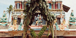 Is blessed the child  for varakur sri venkatesa perumal temple