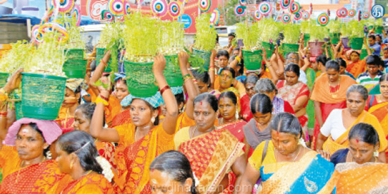 Muluparai march at Palai Sandana Mariamman temple festival