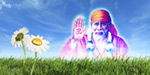 Sai Baba's glory came at the request of eight days!