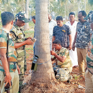 Leopard lurking in the garden near Sathyamangalam: A camera-mounted forest department study