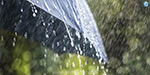 The northeast monsoon from tomorrow