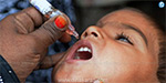 Polio drops camp tomorrow is the second installment in the Corporation of Chennai