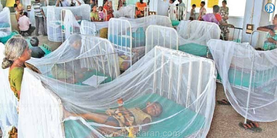 Dengue fever kills 16 in Erode district: public demands the government to take rapid action