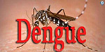 Dengue death toll continues in Tamil Nadu today