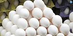 Egg price 399 cash increase