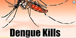 Dengue, mystery fever 9 killed including child