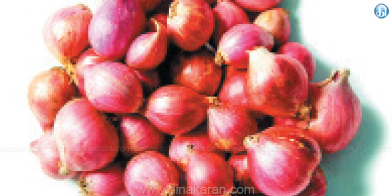 By rain small onion Price rises again