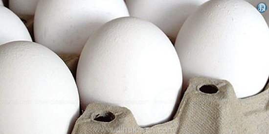 Egg price 396 Cash Settlement