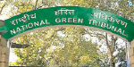 The issue of trash in the forest of Medavakkam: The Green Tribunal orders to respond to the Government of Tamil Nadu