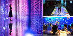 The spectacular colorful digital exhibition set in Beijing: Visitors are surprised