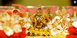 What is the specialty of the Atcaya tiruti?