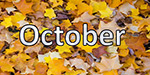 An exciting month of October!