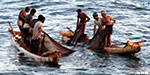 300 fishermen were rescued when they went to fishing on the Andhra border