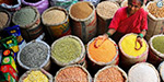 200 centers for procurement of pulses