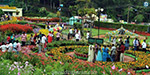 Kodaikanal, Coonoor tourists converge on the mountain: summer vacation along the growing multitude of everyday