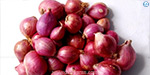 Decrease the yield small onion Kilometers to increase by 52