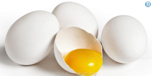 Egg prices continue to rise 312 cash fixing