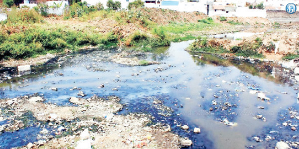 Dye waste water mixed in the Niall River: Emphasis to take action