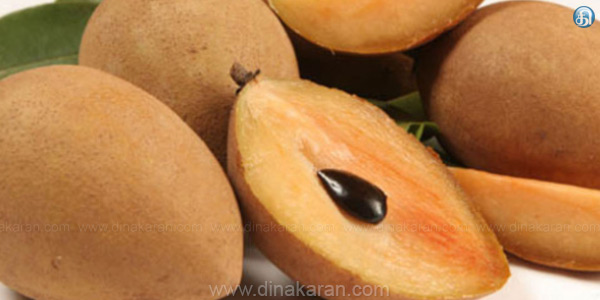 Farmers are concerned about the draining of the sapota