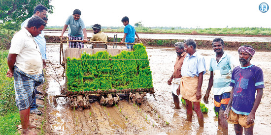 In the Krishnarayapuram area, the wage workers are receiving the mechanical planting deficit