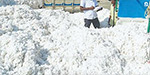 Waste pulses rise Open End Spinning Mills that convert to pure cotton yarn: the quality and value of the book