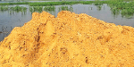 Larry, a lorry sand loot at Tamarabarani, called paddy and pond maintenance