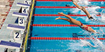 State-level swimming competition starts tomorrow in Chennai