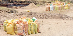 Sand stolen bags on the bunker bunds near Karur