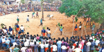 The Pongal festival is celebrated in Daraburu