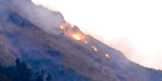 Fire forest fire broke out at Kokalai hills near Kodalur