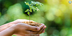International Environment Day: Save the body without exclusion