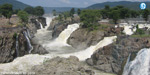 Opposition to build a dam in the river Cauvery