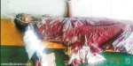 refused to love, young teenager chopped off the hand of lover