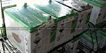 3 million worth of  batteries theft   container sent to Thailand