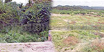 25 thousand acres of land in the dry due to 100 underground dams in Andhra