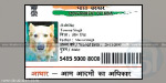 person arrested for preparing Aadhaar card to dog
