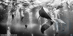 2015 National Geographic Traveler photo contest winners revealed