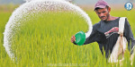 Remainder of about Rs 11,000 crore to the government fertilizer subsidy