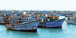 Abdul Kalam funeral: the fishermen did not go out to sea