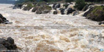 new dams across the river Cauvery and levies