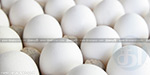 new system in Namakkal, egg price fixing only for 52 grams